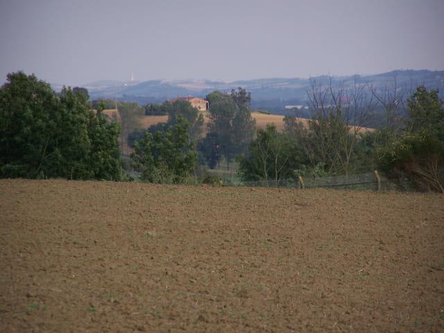 Les plaines du Lauragais