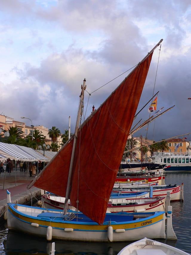 Les pointus de Méditerranée
