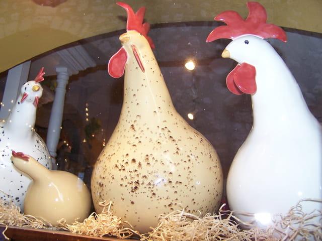 Les poules de Saint-Paul