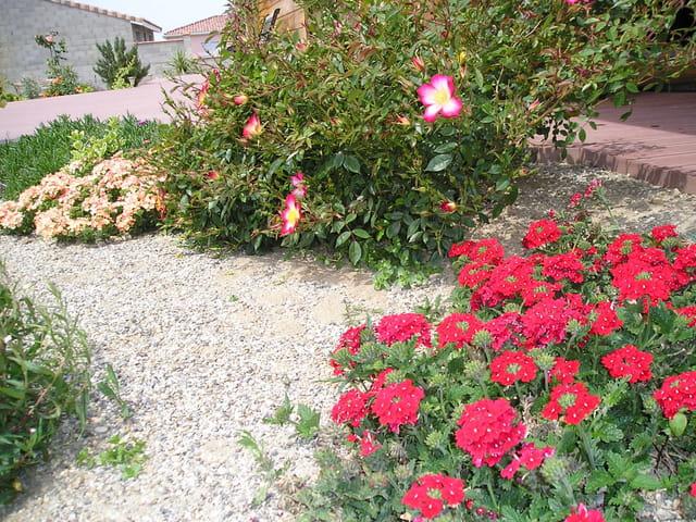 Les premieres couleurs du printemps par regis boutolleau sur l 39 internaute - Couleur du printemps ...