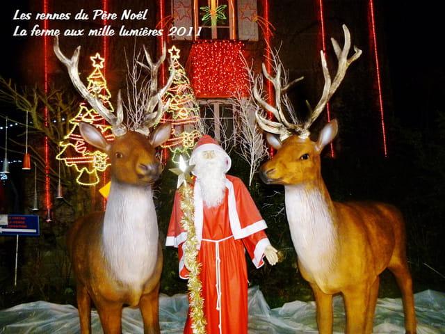 Les rennes du Père Noël à la ferme aux mille lumières