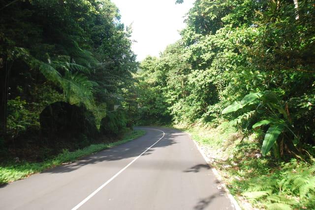 les routes de La Dominique