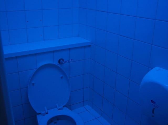 Les seuls wc aux néons bleus