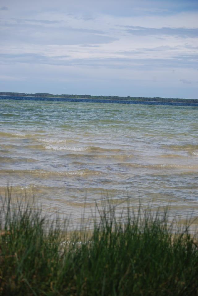 Les vaguelettes du lac
