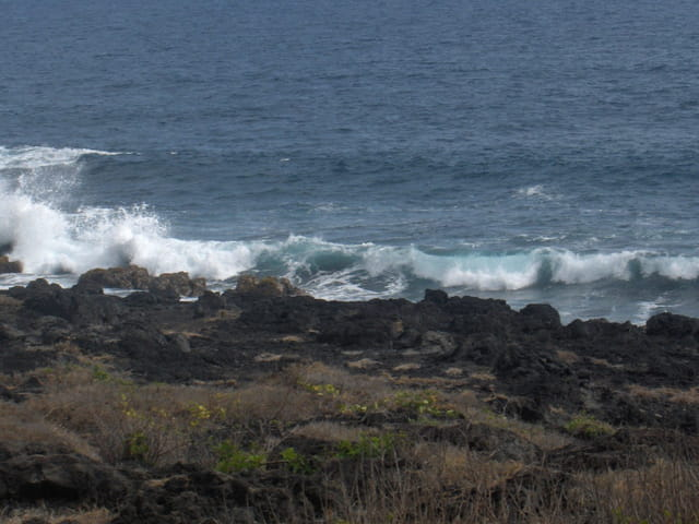 Les vagues de l'étang salé