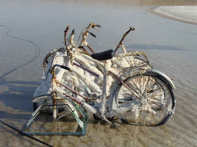 Les vélibs de la mer morte
