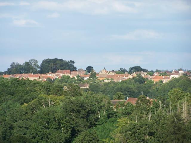 les vieux toits de Vieux-Château