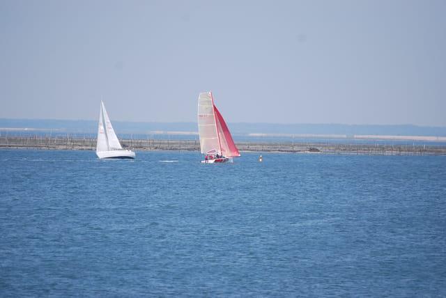 les voiliers du Bassin d'Arcachon
