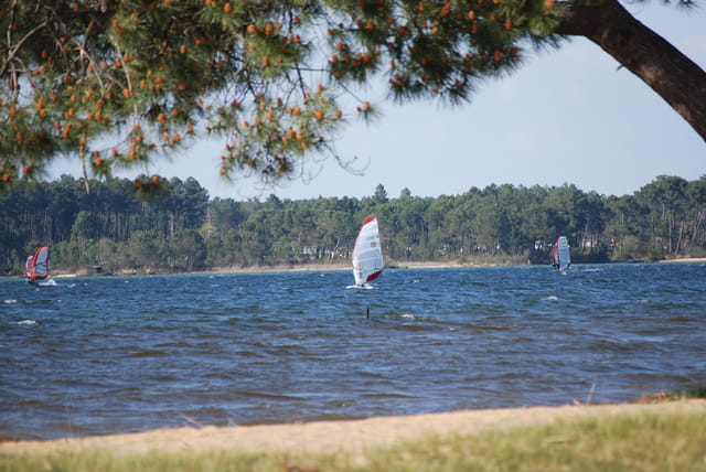 les voiliers sur le lac