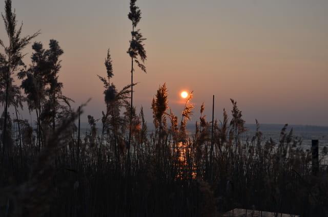 Lever de soleil au bord du lac