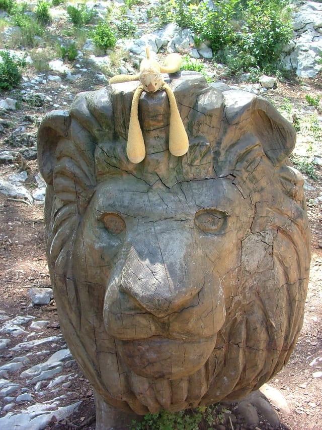 Lion sur lion