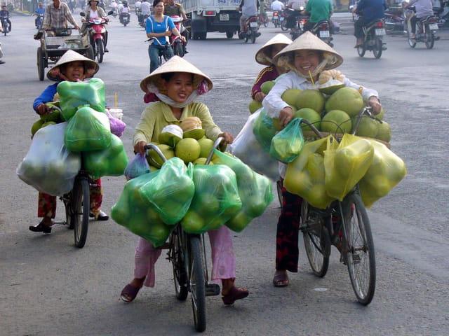 Livraison de pomelos
