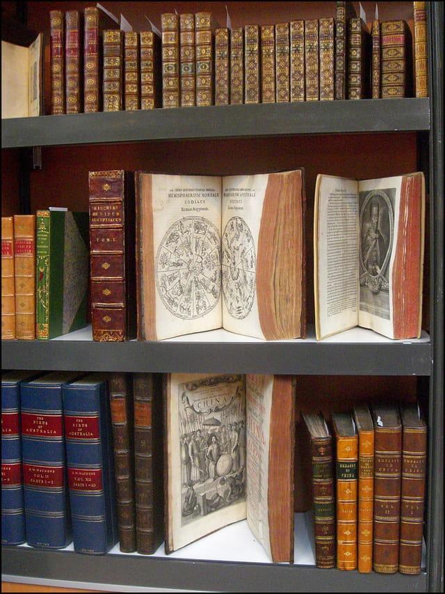 Livres anciens pour bibliophiles