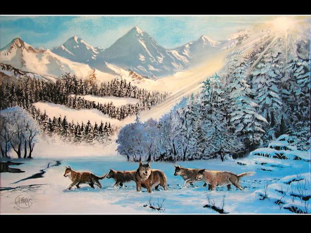 Loups dans la neige