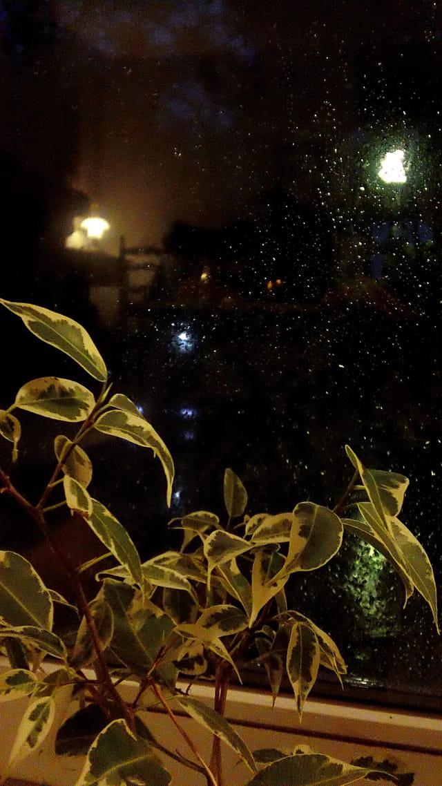 Lumières dans la nuit...