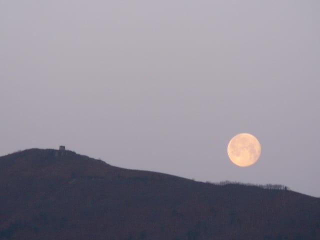 Lune hendayaise