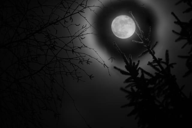 Lune sous un ciel clair