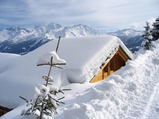 Ma cabane sous la neige !