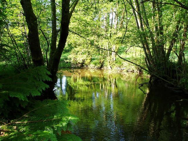 Ma rivière