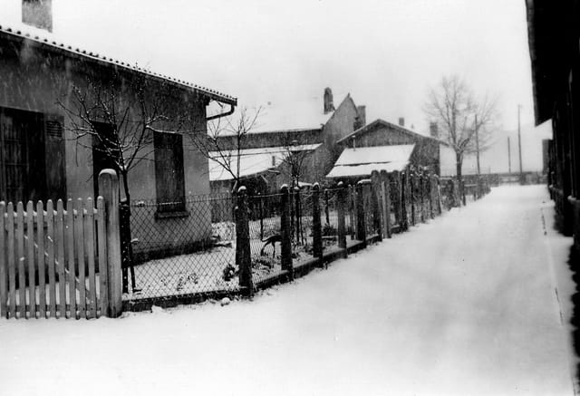 Ma rue sous la neige