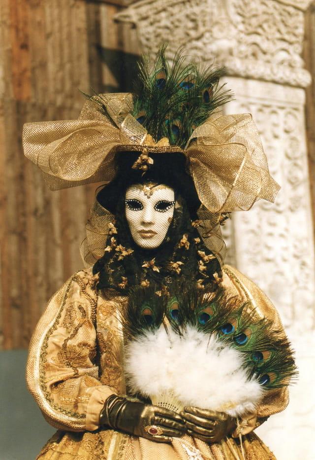Magnifique costume de carnaval.