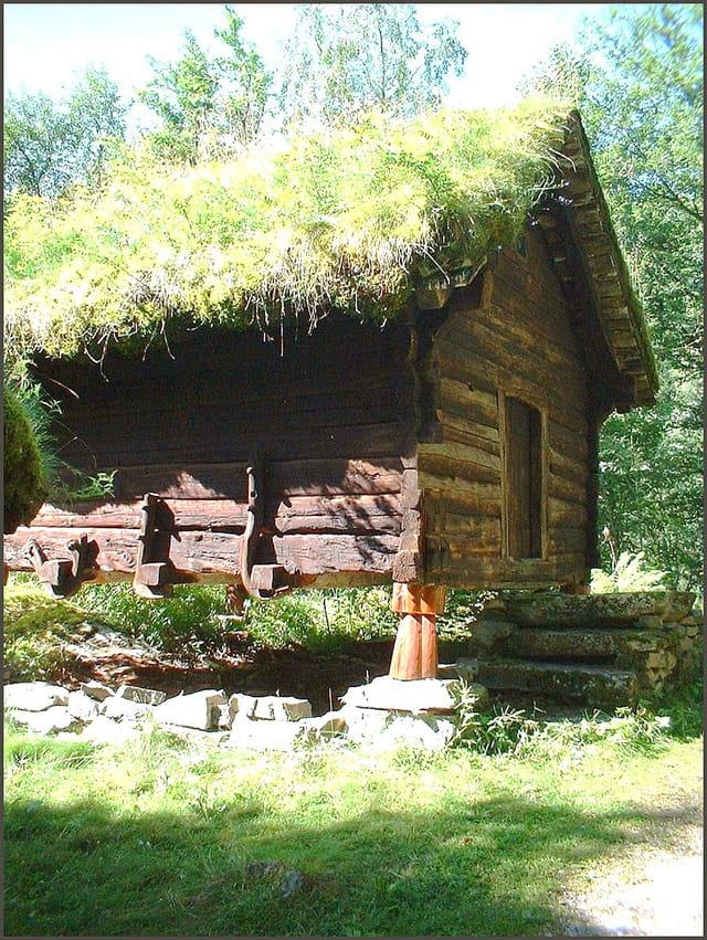 Maison bois et tourbe fleurie