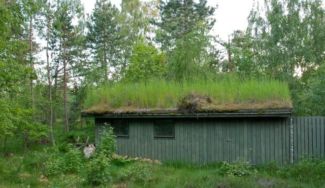 Maison danoise au toit v g tal par jocelyne fonlupt kilic for Maison toit vegetal