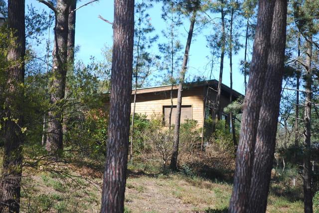 Maison dans les bois par genevieve lapoux sur l 39 internaute - Maison dans les bois ...