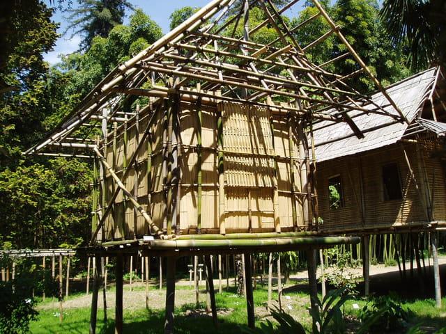 maison de bambou par monique corre sur l 39 internaute. Black Bedroom Furniture Sets. Home Design Ideas