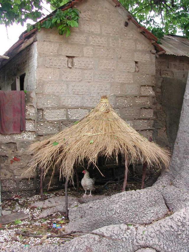 Maison de cocotte
