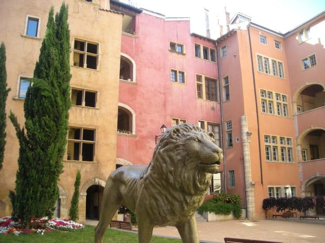 Maison des avocats Vieux Lyon
