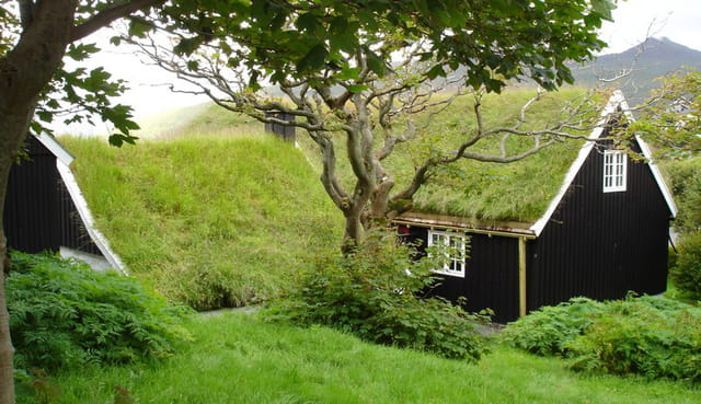 Maison noire à toit de tourbe