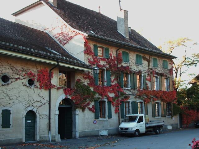 maison vignerone
