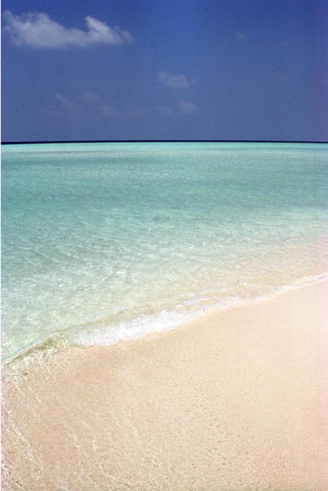 Maldives blues