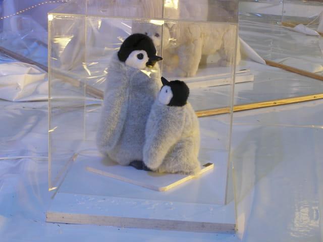 Maman pingouin et son petit tout près du marché de Noël