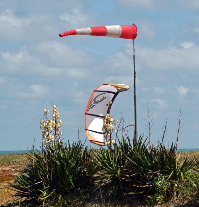 Manche à air et voile de kitesurf