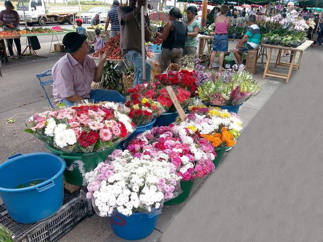 Marché et Bazar (7)