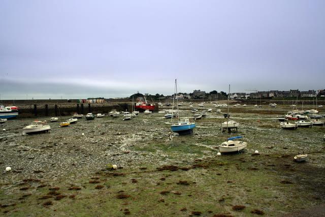 Marée basse à Roscoff