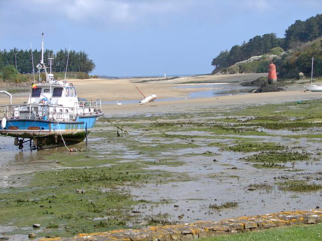 Marée basse dans une ria bretonne