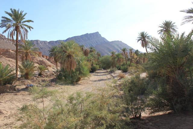Maroc la route du sud