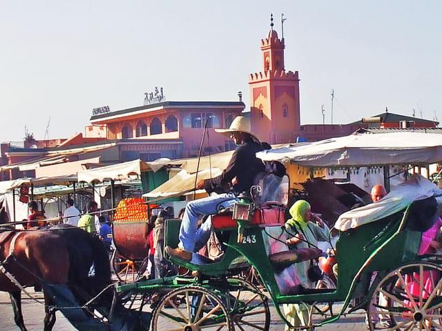 """Marrakech """"La perle du Sud"""""""