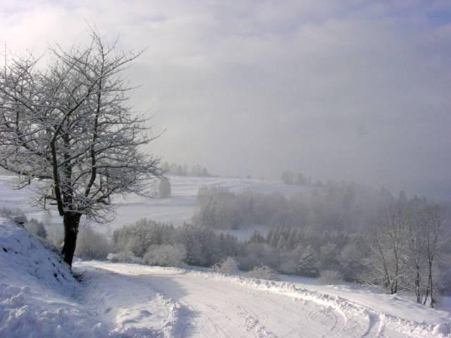 Matin d hiver