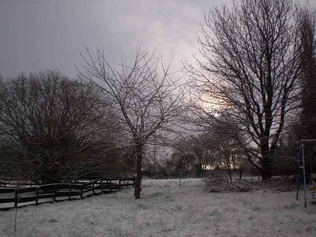 Blanc matin de printemps