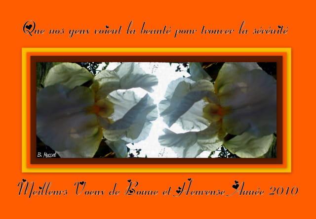 Meilleurs Voeux de Bonne et Heureuse Année 2010