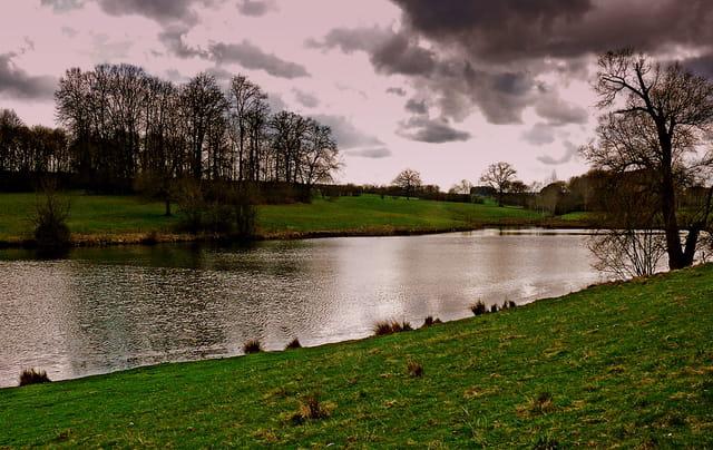 Menace sur l'étang