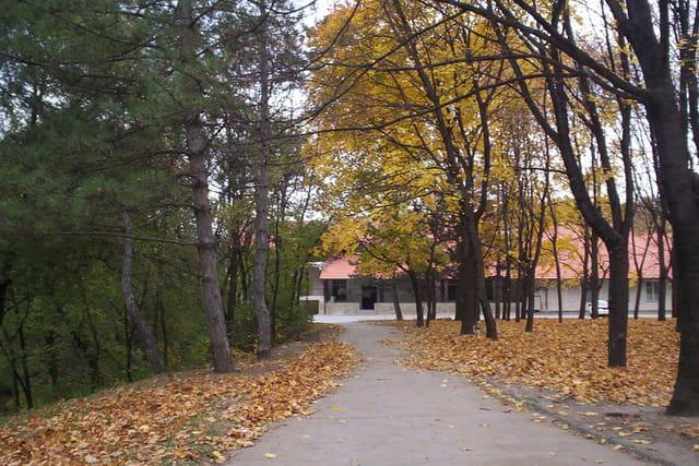 Mi-ete mi-automne