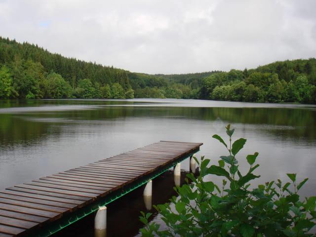 Mille étangs