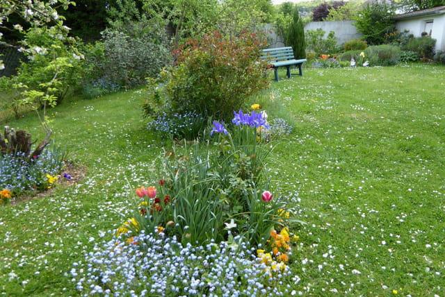 Mon jardin de derri re la maison au printemps par jacqueline dubois sur l 39 - De la maison au jardin ...