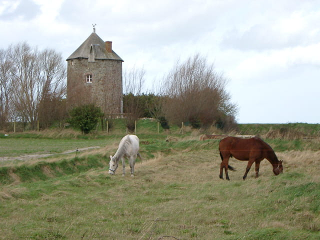 Moulin à vent de normandie