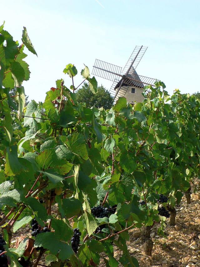 Moulin en Bourgogne